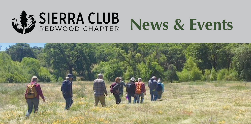 Sierra Club Redwood Chapter