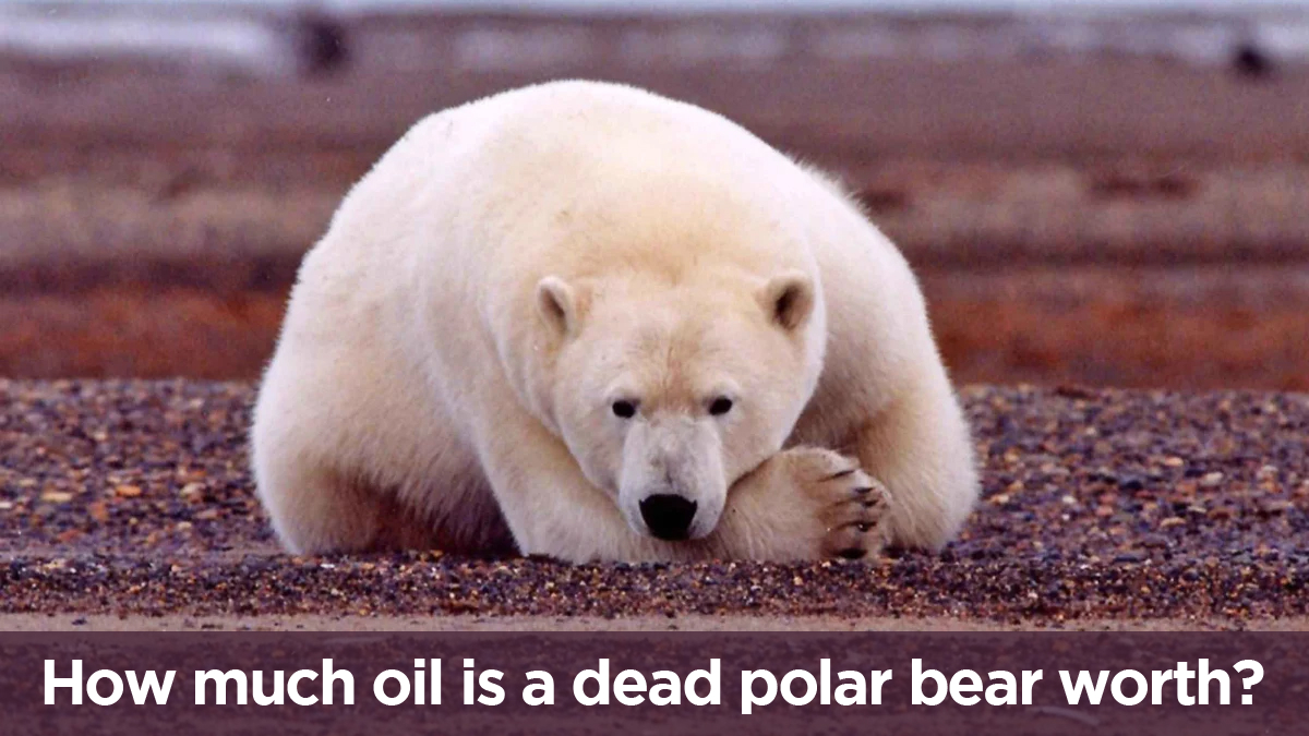 Tell SAExploration: Stay Out of the Arctic