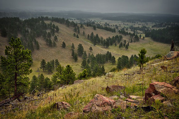 Wind Cave                                                           National Park                                                           in Custer                                                           County, South                                                           Dakota