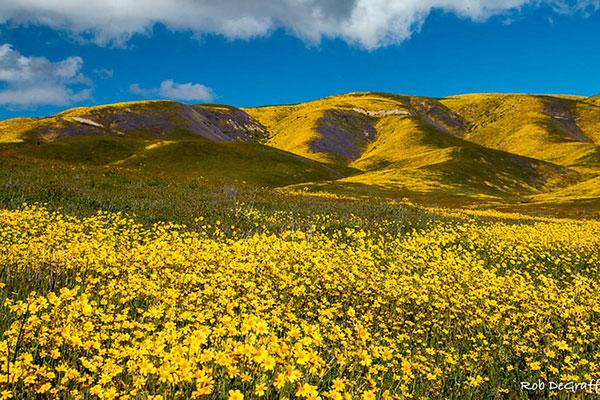 California's super, San Luis Obispo County, Carrizo Plain National                                                           Monument