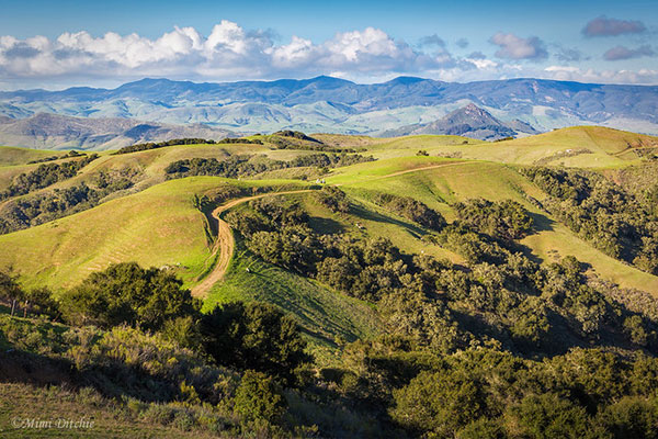 View from the top of Prefumo Canyon Road outside of                 San Luis Obispo in California