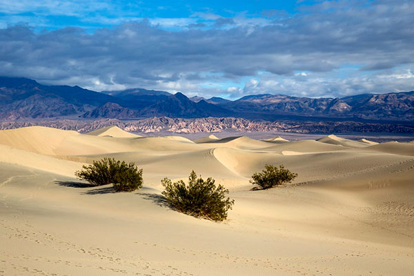 Mesquite Flat Sand Dunes, Death Valley                       National Park in Death Valley, California