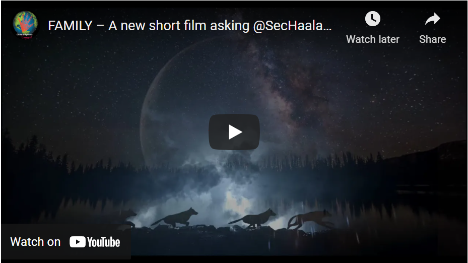 """Watch """"Family"""" -  a short film asking Secretary Haaland to protect wolves - and send her a message!"""