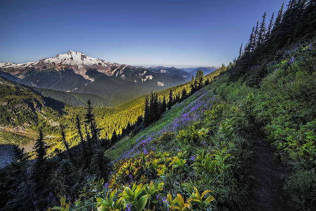 -- Glacier Peak         Wilderness, North Cascades, Washingtona --