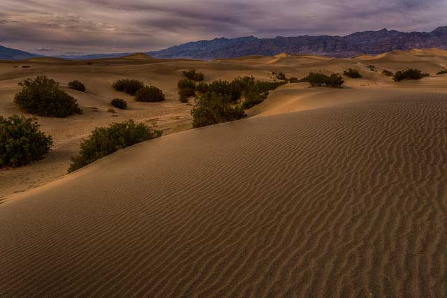 --                        Death Valley, California --