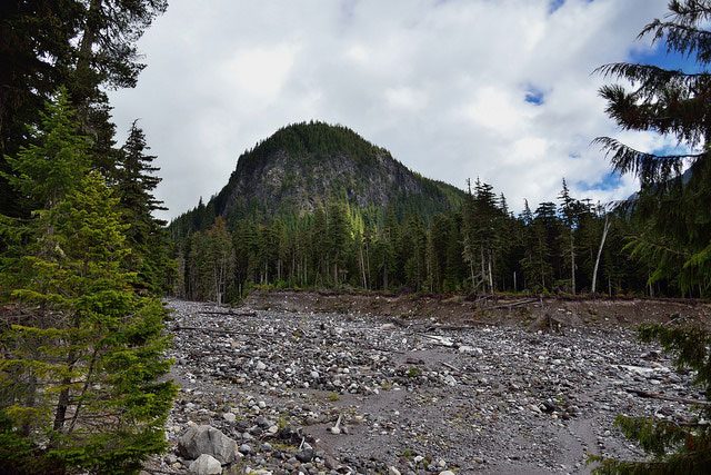 -- Ricksecker Point         and the River Valley with the Nisqually River in Mount Rainier         National Park --
