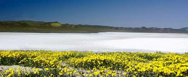 --                         Soda Lake at the Carrizo Plain National                         Monument, California --