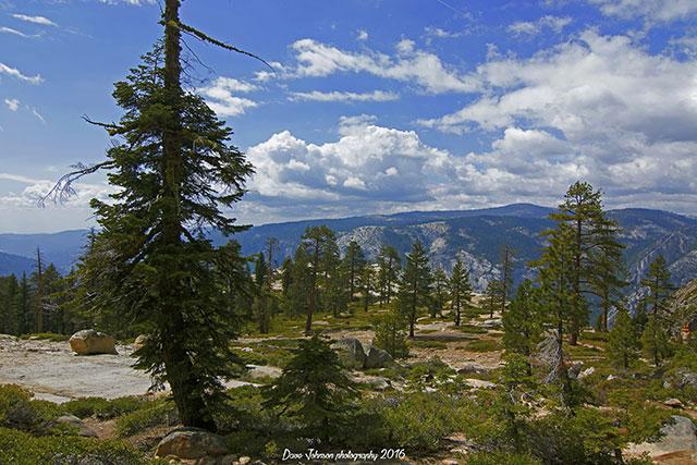 --                         Taft Point in Yosemite National Park, California                         --