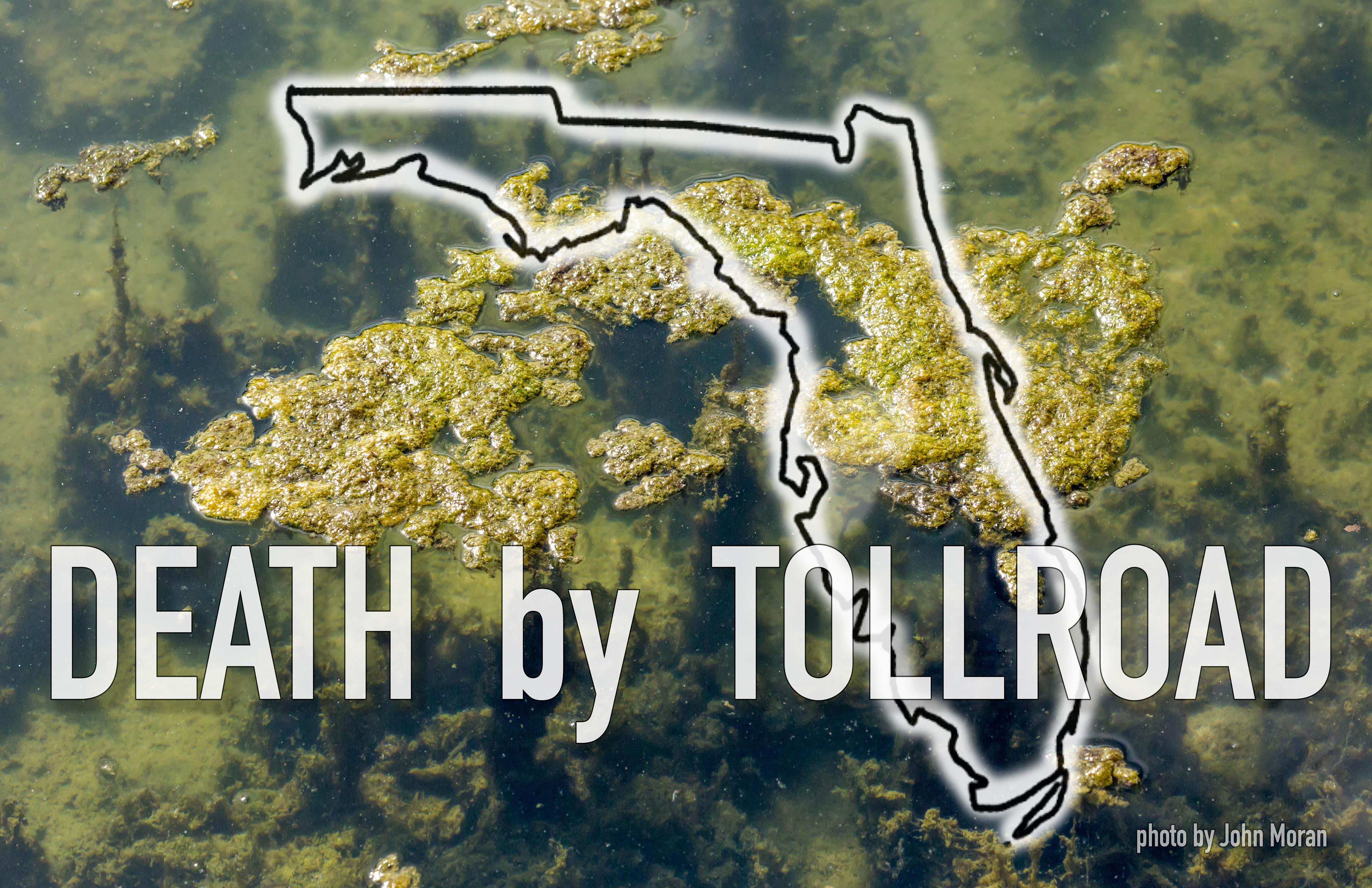 """Floating Algae with superimposed outline of Florida and text """"Death by Tollroad"""""""